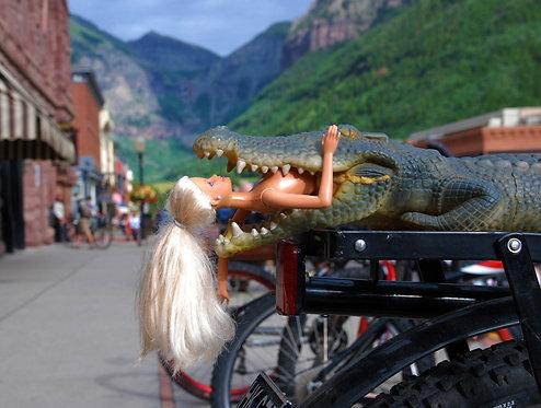 Telluride Bike Rack