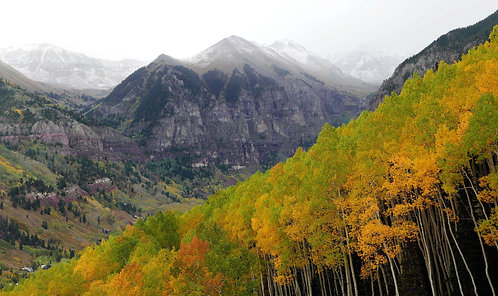 Fall from the Gondola, Telluride