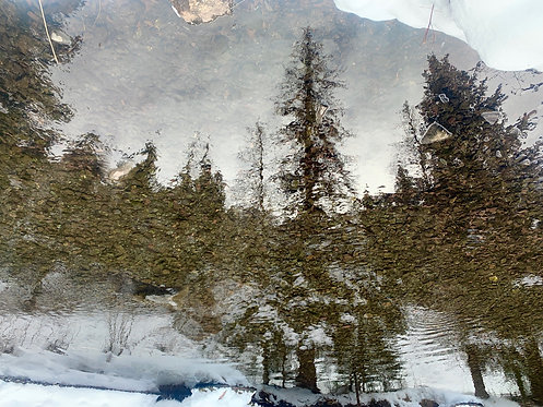 San Miguel Reflection