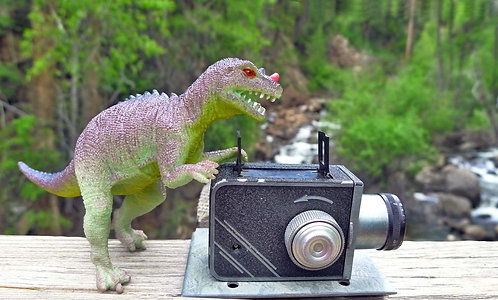 Dinographer