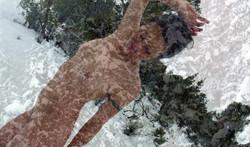 Lorelei Snow