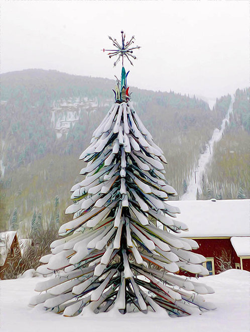 Ski Tree, Telluride