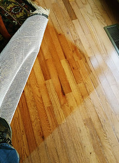 WINDOW TINTING WILL SAVE FLOOR FADING