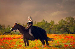 Equestrian Photographer Fort Worth