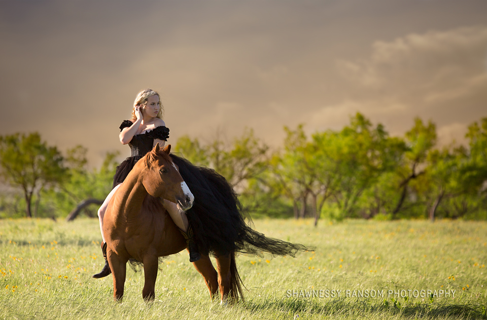 Equestrian Photography Dallas Tx