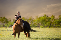Equestrian Photography Dallas Tx