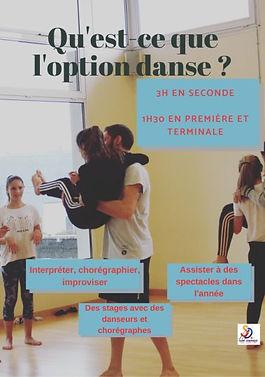 option_danse2.jpg