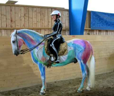 Visible Horse & Rider: Sweden