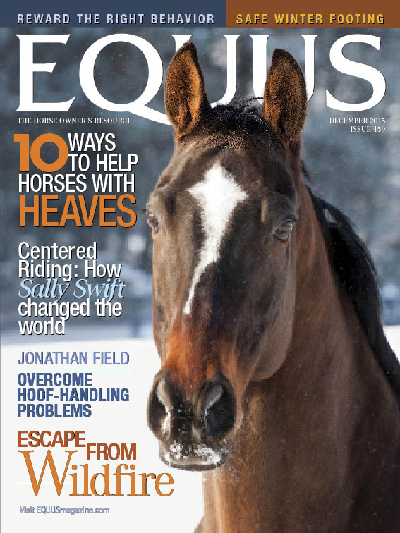 EQUUS Dec 2015 cover