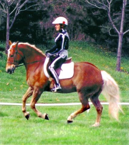 Visible Rider: Canter