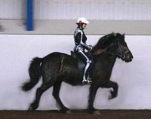 Visible Rider: Tolt