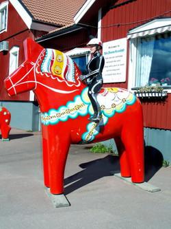 VR on Swedish Dahl Horse