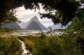 Milford Sound 1.jpg
