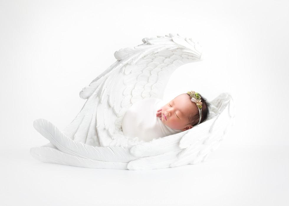 whiteangelwings.jpg