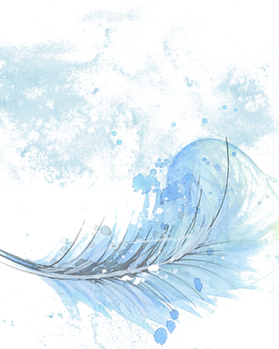 feather-1588819_1920_edited.png