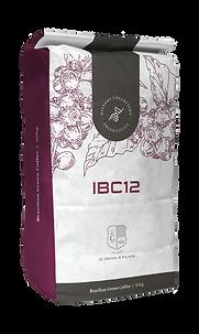 ibc12-01.png