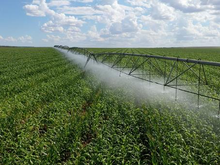 Polo de Irrigação Sustentável do Noroeste de Minas é uma realidade