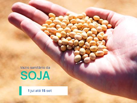 Atenção, o vazio sanitário da soja acontece de 1 de julho a15 de setembro.