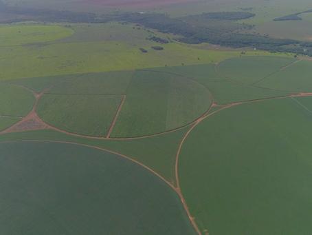 Paracatu tem a maior área irrigada por pivôs centrais no Noroeste de Minas Gerais