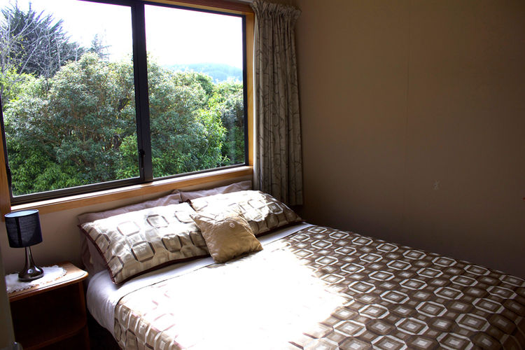 Franza-Farm-Dunedin-accommodation-forest