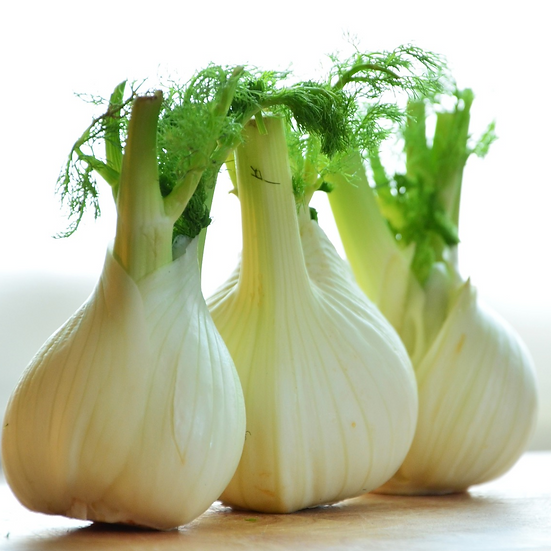 Fennel Bulb (each)