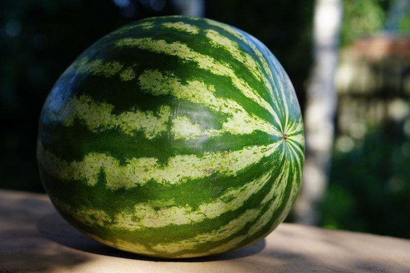 Watermelon (each)