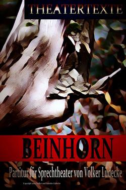 Beinhorn, Infos zum Buch_ https___www