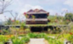 Sacred_Root_retreat_Cambodia.jpg