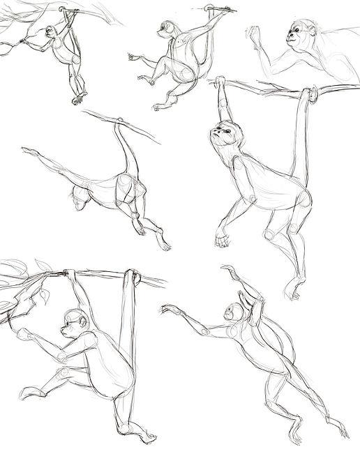 MonkeySketches.jpg