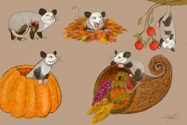 Opossums Character Sheet