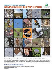 Scavenger Hunt Bingo Card