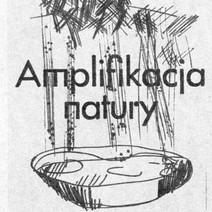 Amplifikacja natury