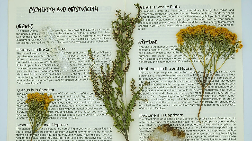 ADULT Astrology Natal Report Booklet