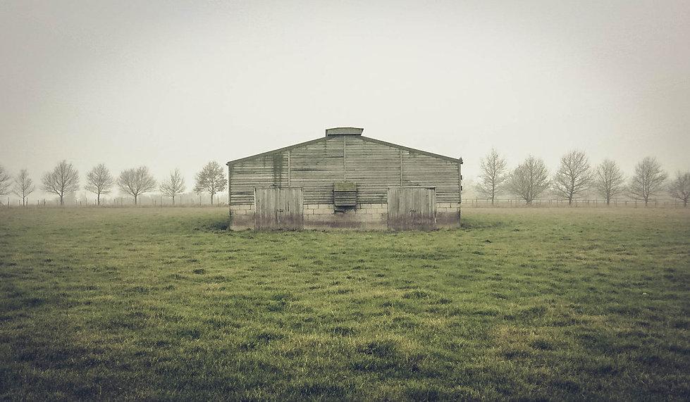 The Ghost House.jpg