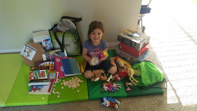 Donations made to Briar Rose from Mackenzie and Friends!
