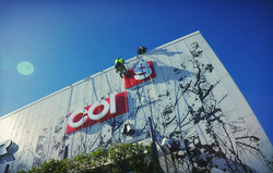 Abseiling sign installers
