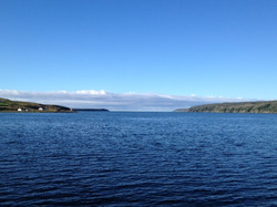View out Trepassey Harbour