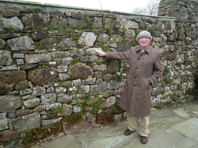 Stone Walls at Torcoed Fawr