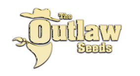 THE OUTLAW SEEDS logo ZŁOTE_3.png