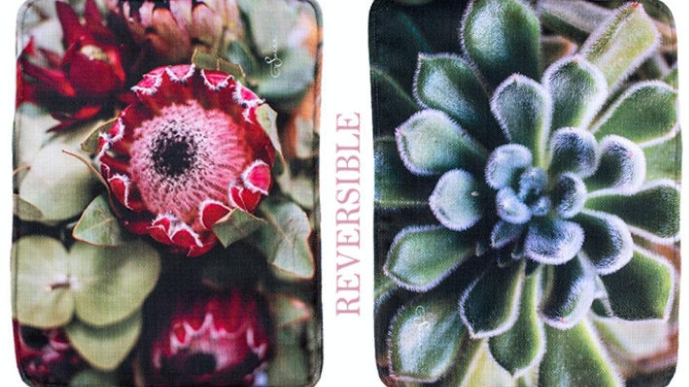Plek Matjies - Rooi Proteas en Vetplant