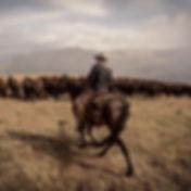 Sepp_Ranch_Horseback.jpg