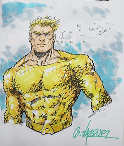 Aquaman color torso