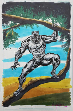 Black Panther Color 11 x 17