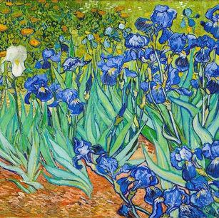 Between Vincent Dreams