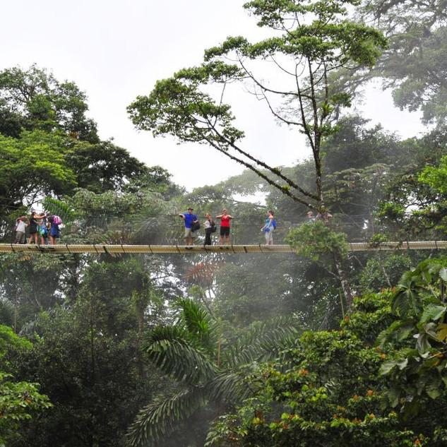 Costa_Rica_DSC8020_S_FAUTRE.JPG
