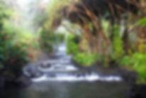 Tabacon-Hot-Springs-Costa-Rica-Travel.jp