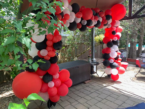 Full Organic Ballon Arch without curtains: $210