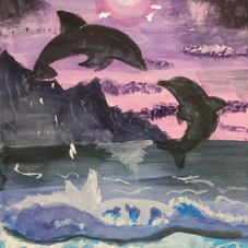 Dolphins at Night