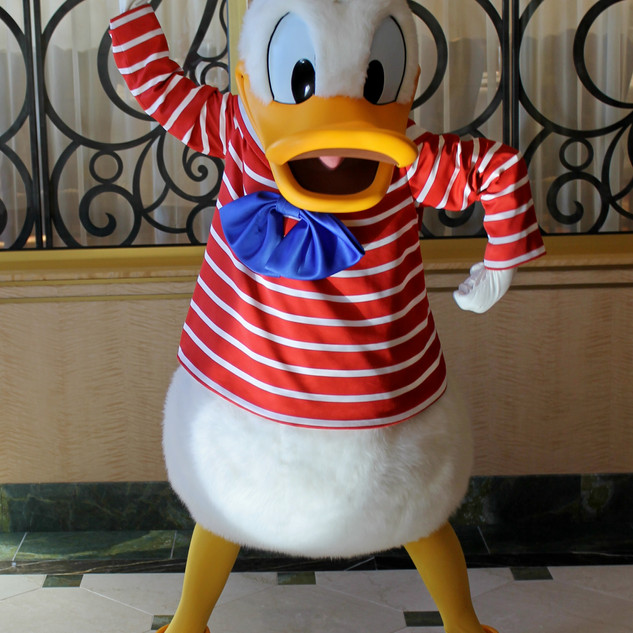 UDCHG SAIL AWAY DONALD FANTASY.jpg
