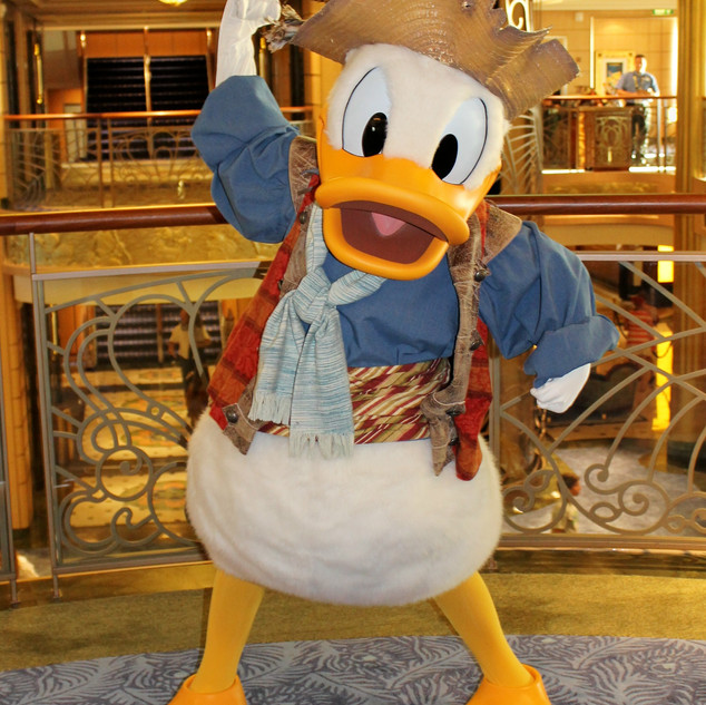 UDCHG PIRATE DONALD FANTASY.jpg